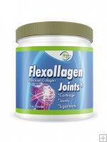 Flexollagen Joints
